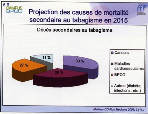 projectioncausesmortalitpartabagismeen2015.jpg